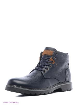 Ботинки GassA. Цвет: синий