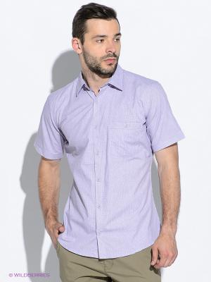 Рубашка Maestro. Цвет: сиреневый