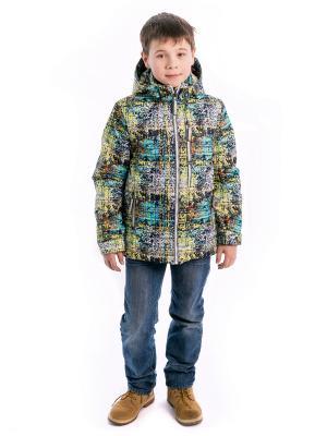 Куртка жека Аксарт. Цвет: синий, желтый