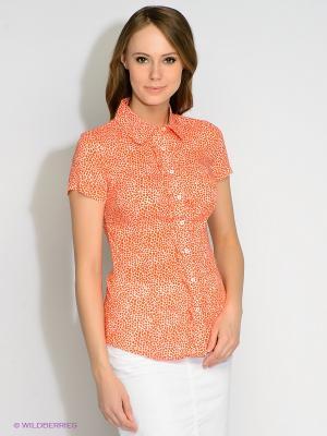 Блузка Finn Flare. Цвет: оранжевый