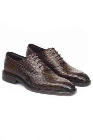 Shoes UominItaliani. Цвет: brown