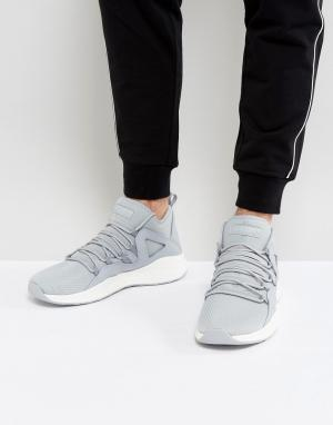 Jordan Серые кроссовки Nike Formula 23 881465-024. Цвет: серый