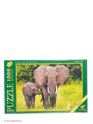 В мире животных. Слоны на прогулке ПАЗЛЫ МАКСИ-ПЭК Канц-Эксмо. Цвет: зеленый, серый