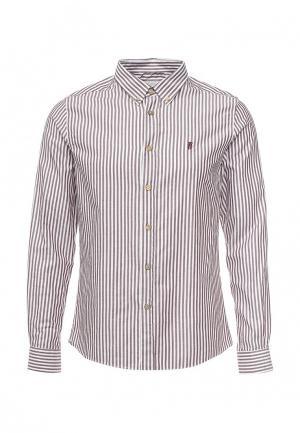 Рубашка Frank NY. Цвет: коричневый