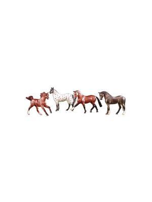Набор из 4-х лошадей спортивных пород  в подарочной коробке. Breyer. Цвет: коричневый, белый