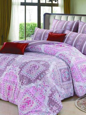 Комплект постельного белья, Ely Fly Cappucino , 1.5 спальный KAZANOV.A.. Цвет: лиловый