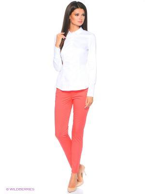 Джинсы Pantaloni Torino. Цвет: коралловый
