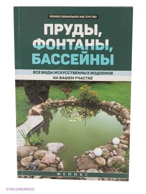 Пруды, фонтаны, бассейны: все виды искусственных водоемов на вашем участке Феникс. Цвет: зеленый