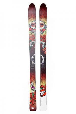 Горные лыжи  Starsky 173 Multi Apo. Цвет: мультиколор