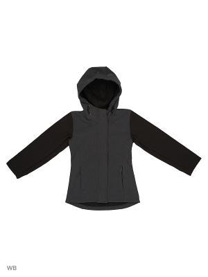 Куртка Modis. Цвет: темно-серый, черный