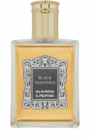 Парфюмерная вода Black Dianthus Il Profvmo. Цвет: бесцветный