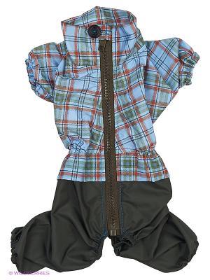 Дождевик холодный (Йоркширский терьер №1), мальчик ТУЗИК. Цвет: зеленый, голубой