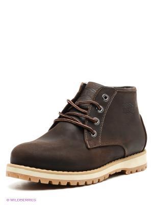 Ботинки FRIENDLY. Цвет: темно-коричневый