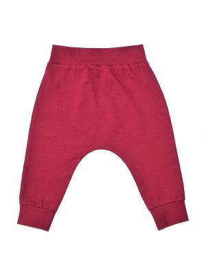 Брюки The hip!. Цвет: бордовый