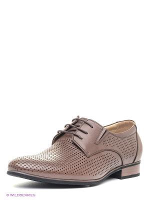 Ботинки Daniela Bernardi. Цвет: коричневый