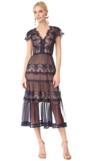 Кружевное платье Gwyneth с короткими рукавами Catherine Deane. Цвет: темно-синий/светло-коричневый