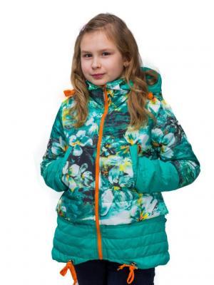 Куртка Пралеска. Цвет: салатовый