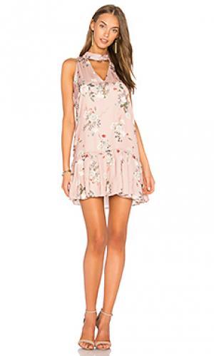 Платье с вырезами sara Amanda Uprichard. Цвет: розовый