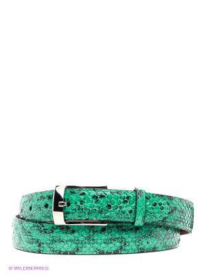 Pемень Pan American leather. Цвет: зеленый