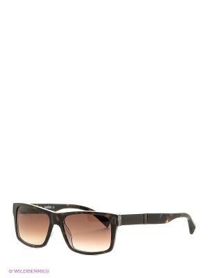Очки солнцезащитные BLD 1521 103 Baldinini. Цвет: коричневый