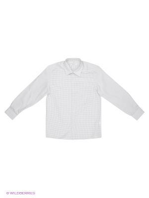 Рубашка Cleverly. Цвет: светло-серый