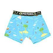 Термобелье (низ) женское  Underwear Pacific Picture Organic. Цвет: голубой