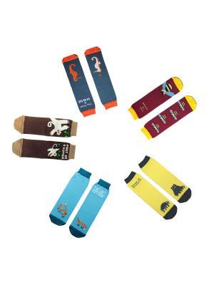 Набор носков в коробке Big Bang Socks. Цвет: желтый, голубой, коричневый