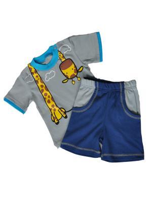 Комплект одежды ZEBRA KIDS. Цвет: серый