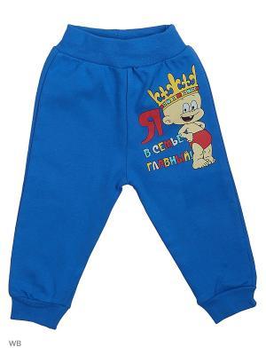 Штаны для новорожденных Bonito kids. Цвет: синий