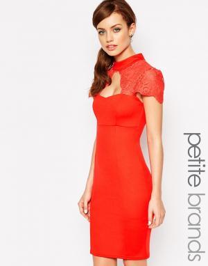 Lipstick Boutique Petite Платье-футляр с высокой горловиной и кружевной вставкой Bouti. Цвет: красный