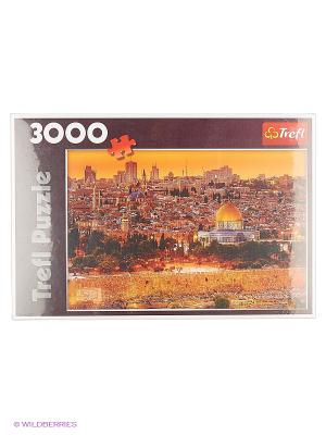 Крыши Иерусалима 3000 дет. Trefl. Цвет: коричневый