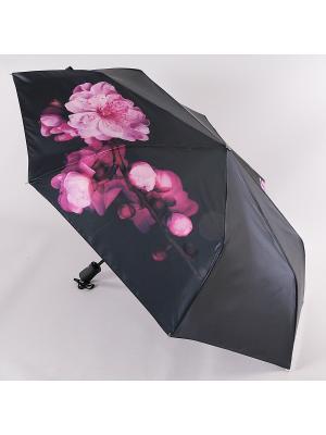 Зонт Trust. Цвет: черный, фуксия