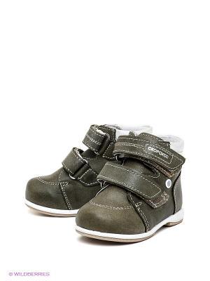 Ботинки Детский скороход. Цвет: темно-зеленый