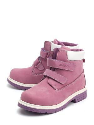 Ботинки DITOP. Цвет: фиолетовый