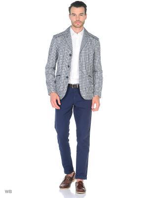 Пиджак ABSOLUTEX. Цвет: синий, серый