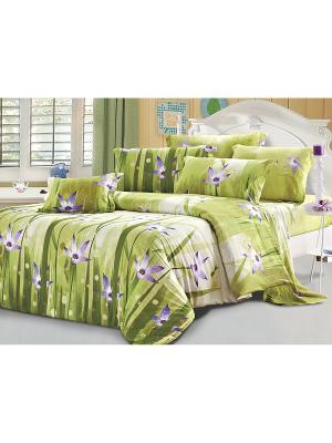 Постельное белье Motive 2,0 сп. Amore Mio. Цвет: зеленый, фиолетовый