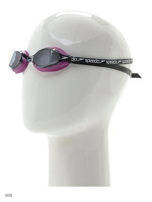Очки для плавания Speedo. Цвет: розовый, серый