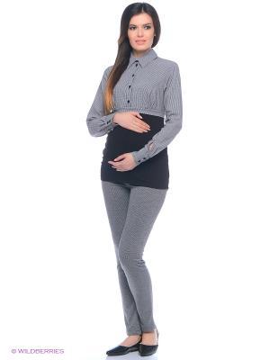 Брюки для беременных 40 недель. Цвет: темно-серый