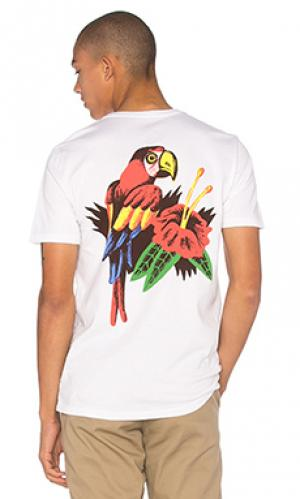 Футболка x luke pelletier parrot Altru. Цвет: белый