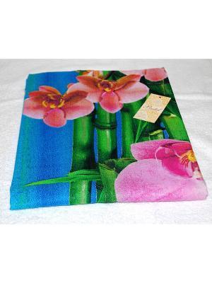 Простыня хлопковая Орхидеи La Pastel. Цвет: синий