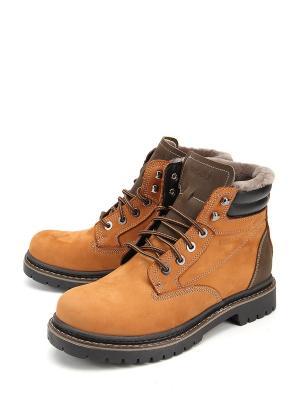 Ботинки Friendly. Цвет: оранжевый