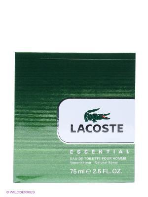 Туалетная вода, 75 мл Lacoste. Цвет: зеленый