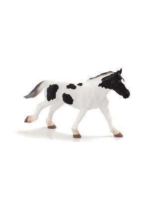 Фигурка Mojo (Animal Planet)-Жеребенок-однолетка породы Тинкер (L). Цвет: черный, белый