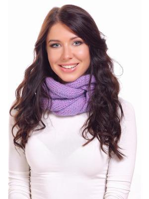 Хомут-воротник Джоди Siberika. Цвет: фиолетовый, розовый