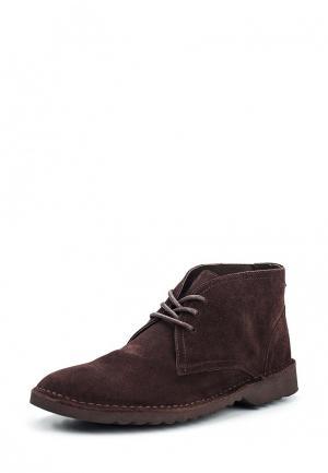 Ботинки Vitacci. Цвет: коричневый