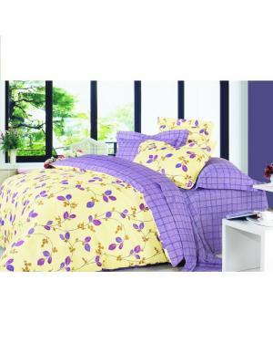 Комплект постельного белья Евро Dream time. Цвет: желтый, фиолетовый
