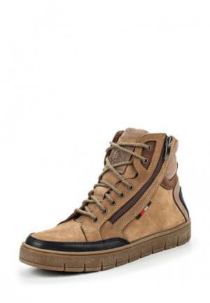 Ботинки Зебра. Цвет: коричневый
