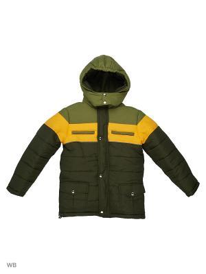 Куртки Senso kids. Цвет: зеленый