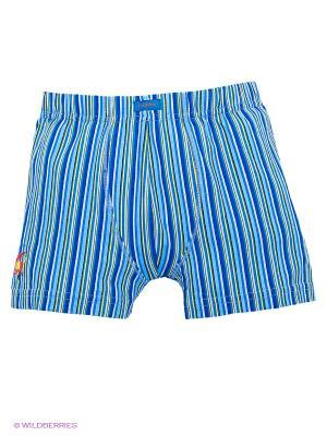 Трусы Lowry. Цвет: голубой, желтый, синий