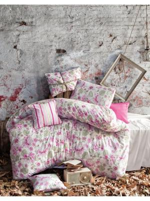 Комплект постельного белья ROSEWOOD 145ТС, евро ISSIMO Home. Цвет: розовый